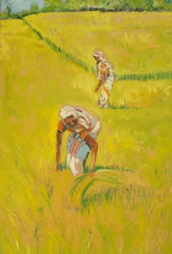 Rice Harvest Painting
